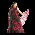 Women's Desi Indian & Pakistani Clothing